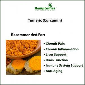 The Benefits of Tumeric and Curcumin